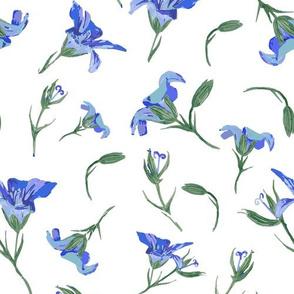 Sweet Geranium Blue