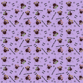 What The Pug?! On Purple
