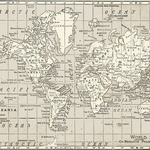 Taupe World Map