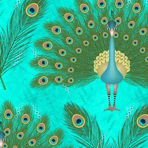 Peacock Feathers (Turquoise)