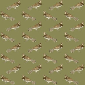 """tiny 1.5"""" ruffed grouse on olive drab"""