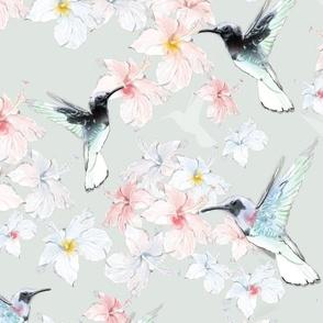 Humming bird Spring Pattern - Beija Flor