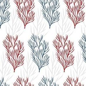 Blue & Red Seaweeds