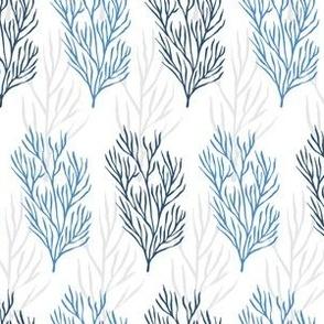 SeaweedsnBlue