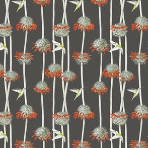 Textile_leonotis_final_dkgray