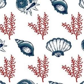 Seashells V.01-Red Blue