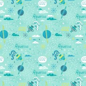 Aquarius Small