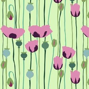 poppies 2g