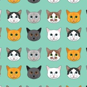 All the Cats- Turquoise