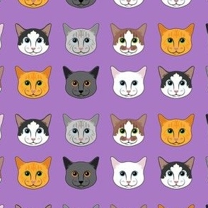 All the Cats- Purple