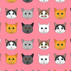 All the Cats- Pink
