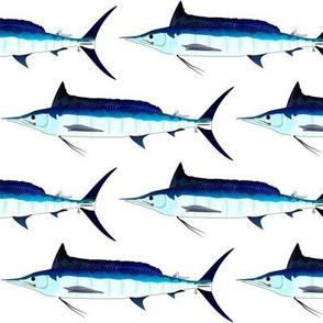 Shortbill Spearfish