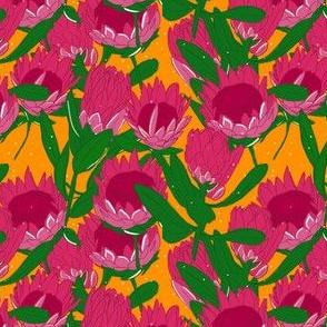 Loud Proteas
