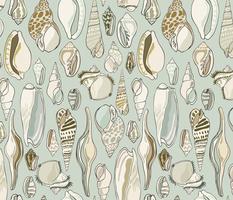 Shells - Aqua