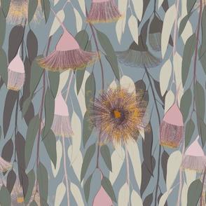 Flowering eucalyptus, australian flora