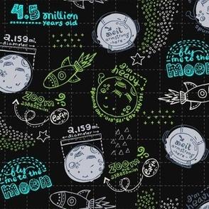 Moon Fun Facts V.02 Dark Gray