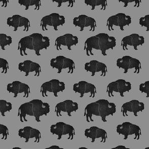 black buffalos on gray