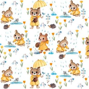 TEDDY IN THE RAIN