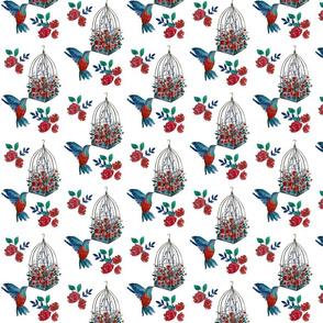 berry hummingbird3