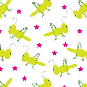 Crickets & Pink Stars