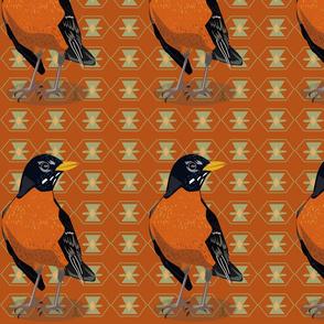 robin-orange