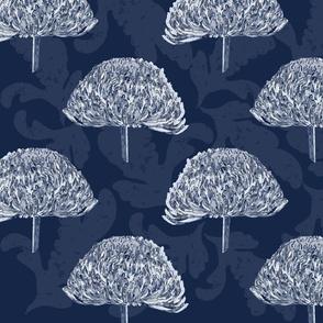 Blue Chrysanthemum-01
