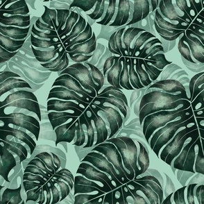 Pattern with monstera /green