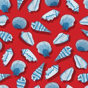 Nautical Shells