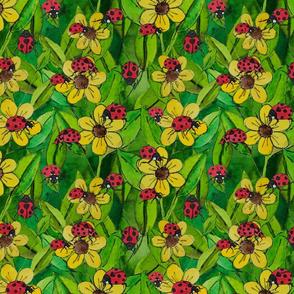 ladybugs on yellow flowers