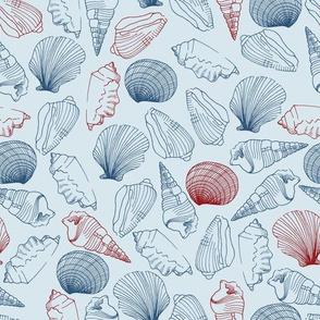 Nautical Shells outlines