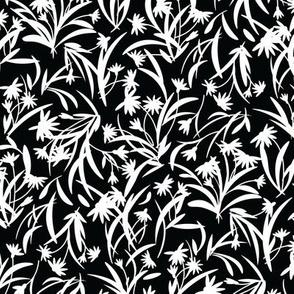 Rudbeckia Black White-01-01