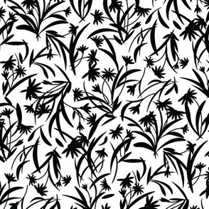 Rudbeckia White Black-01-01