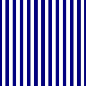 Blue and White ¾ inch Deck Chair Vertical Stripes