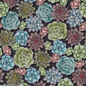 Succulent Garden -  Pink, Blue & Green Pattern With Succulents