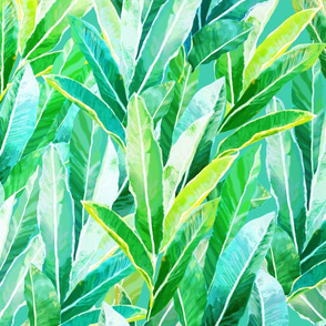 Hawaiian Ginger Leaves Turquoise 150