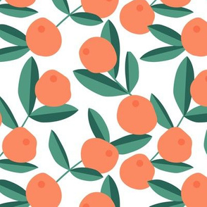 Citrus summer garden fruit and leaves botanical branch tropical spring design pink orange peach green