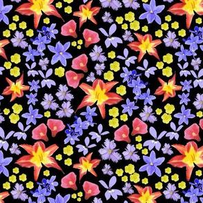 Australian flowers medium