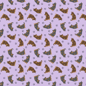 Tiny Lancashire Heelers - purple