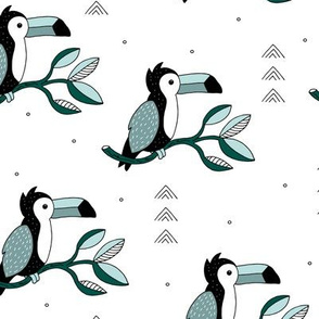 Quirky jungle toucan birds sweet wild life rainforest animals illustration and leaves summer blue gray boys