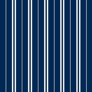 Tie Stripes White On Navy Blue 1:1