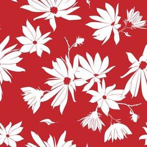 jerusalem artichoke (topinambour) blossoms white on red