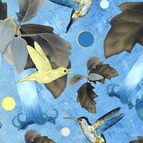 Colibri Bleu