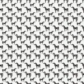 Arabian Horse Standing One-Way Repeat - Dark Dapple Gray Horses with White Background