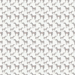 Arabian Horse Standing One-Way Repeat - White Horses with White Background