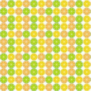 Citrus fruit slices- Clementines, Mandarins and Tangerines