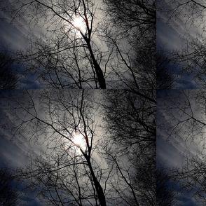 Blue Atmospheres of Maine