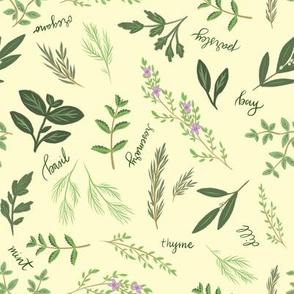 Kitchen Herbs 01