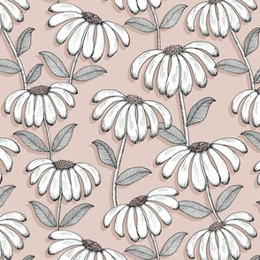 Wandering Daisies - blush