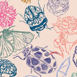 Insect sketch pink