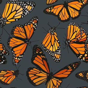 "Monarchs on navy 9"""